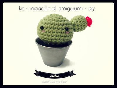 Kit Iniciacion Amigurumi Dmc : donpatron - Kit de iniciacion al amigurumi - Cactus