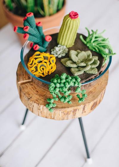 Patrón de ganchillo: terrario de cactus y suculentas