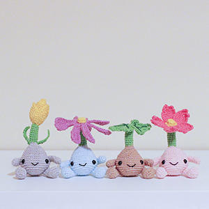 Patrón mandrágoras (semillas flores)