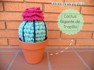 Cactus gigante de trapillo