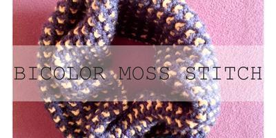 Bicolor Moss Stitch