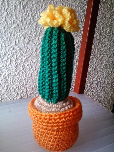 Maceta de Cactus a ganchillo