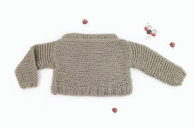 Ladybug Sweater knitting kit