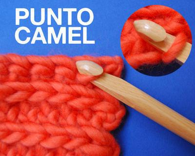 Punto camel